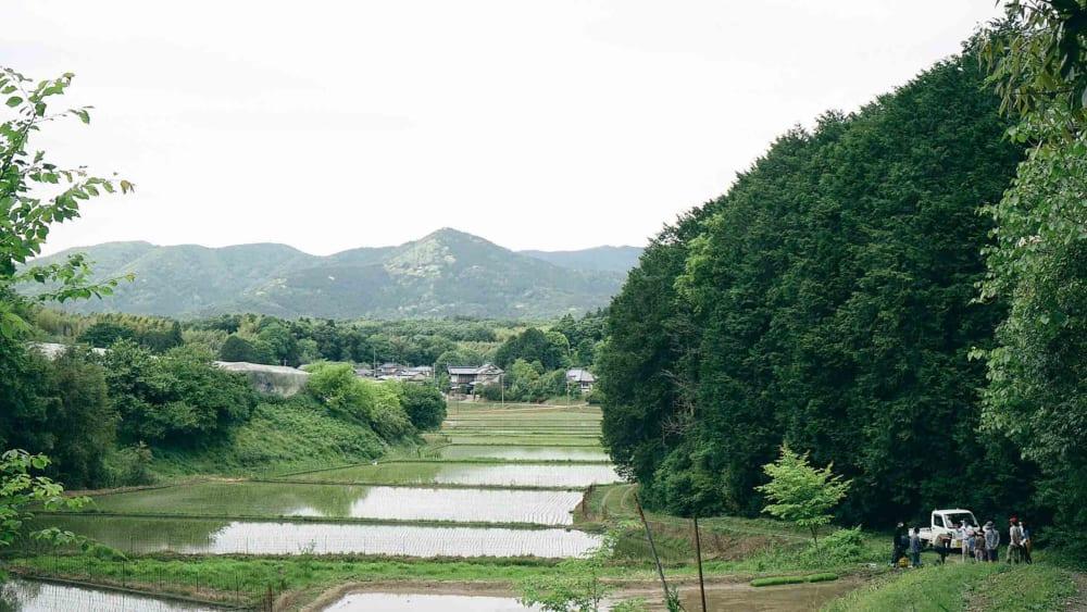 """筑波山の麓に広がる""""トトロの世界""""を守る 日本の原風景、石岡市・八郷 サムネイル"""